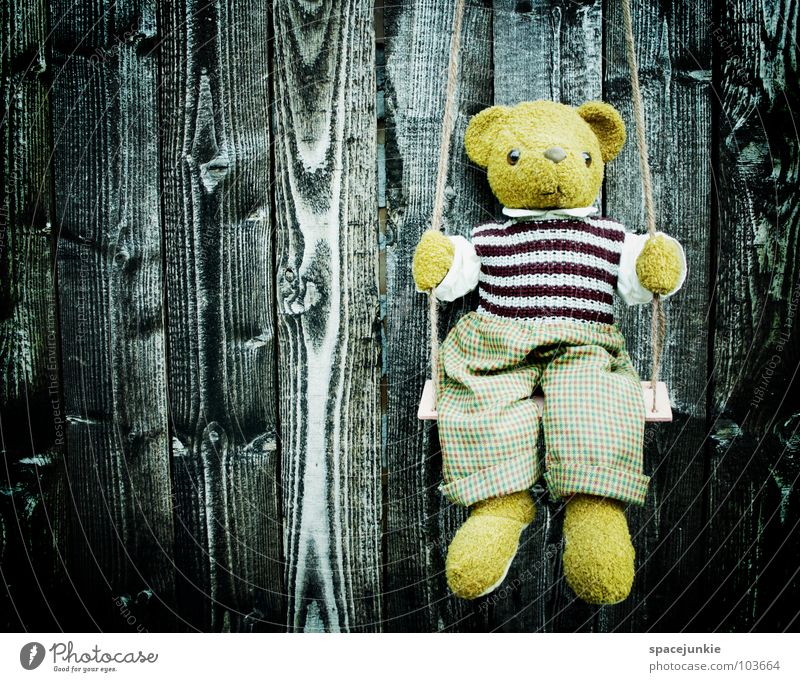 Lonely teddy Wall (building) Wood Facade Teddy bear Swing Toys Childlike Grief Distress Wooden board Structures and shapes Bear Loneliness Sadness Sit Infancy