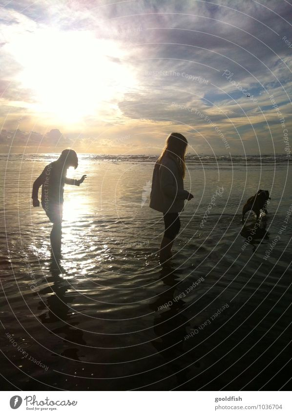 take me to the ocean Vacation & Travel Summer Beach Ocean Child Girl Boy (child) Brothers and sisters Sunrise Sunset Dog Relaxation Happy