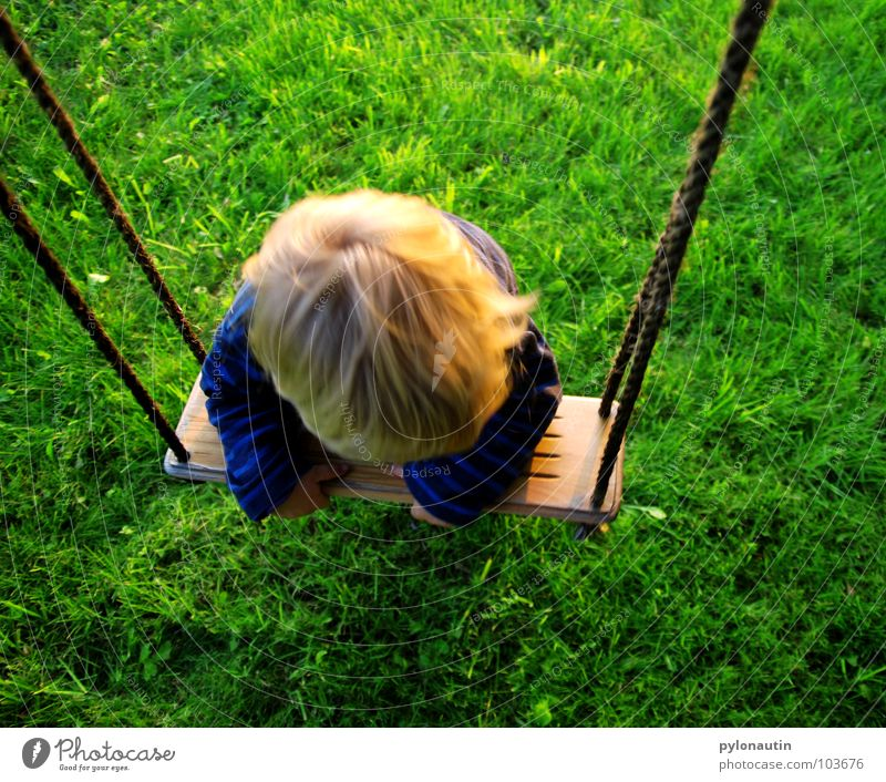 taken for a ride Child Blonde Sweater Swing Wooden board Playground Leisure and hobbies Playing Tree Meadow Green Summer Hang Gymnastics Hand Toddler Blue Rope
