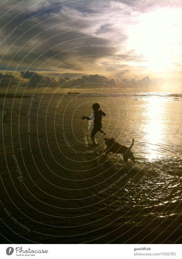 Dog Human being Sky Child Water Summer Ocean Clouds Joy Animal Beach Boy (child) Happy Swimming & Bathing Horizon Masculine