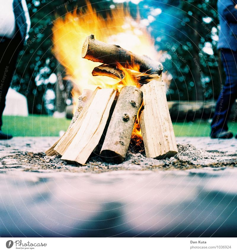 Relaxation Calm Wood Feasts & Celebrations Fire Dynamics Analog Burn Fireplace Firewood Ashes Ignite Cross processing