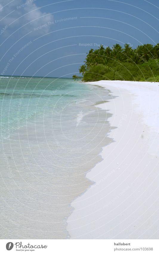 Water Ocean Beach Vacation & Travel Sand Coast Maldives