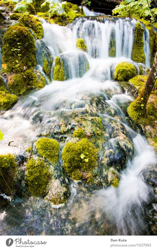Always liquid Nature Water Moss Forest Brook Waterfall Plitvice Lakes Famousness Flow Long exposure Green Smooth Soft Eternity freeze Vaulting Colour photo