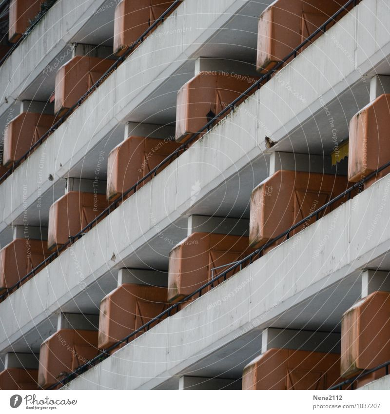 neighborhoods Town Outskirts House (Residential Structure) High-rise Wall (barrier) Wall (building) Facade Balcony Tall Gloomy Concrete Concrete block Cold