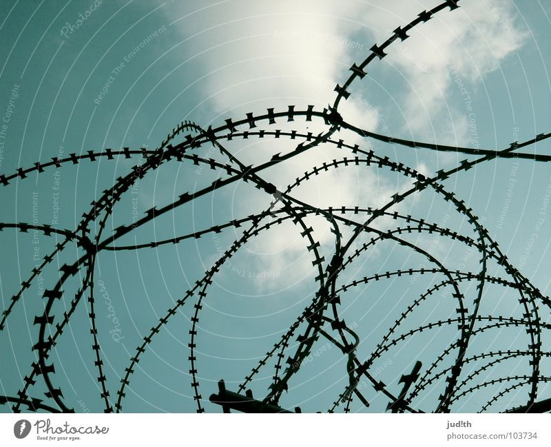 outburst Grating Barbed wire Barbed wire fence Fence Clouds White Captured Wire Dream Dangerous Drift Narrow Guard Surveillance Sky Feeble Penitentiary Blue