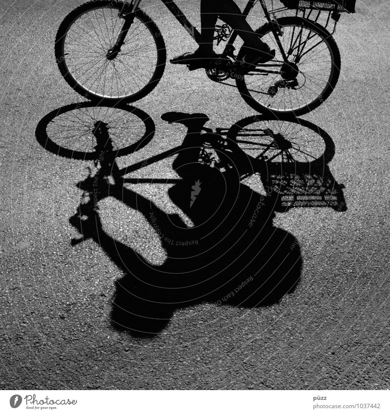 shadow man Bicycle Human being Body 1 Transport Means of transport Cycling Street Movement Wheel Asphalt Summer Formentera Hot Spokes Legs Chain Cycling tour