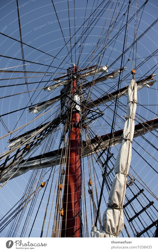 interconnectedness Adventure Far-off places Freedom Cruise Summer Ocean Sailing Navigation Cruise liner Sailing ship Rope Mast Rigging Wood Patient Orderliness
