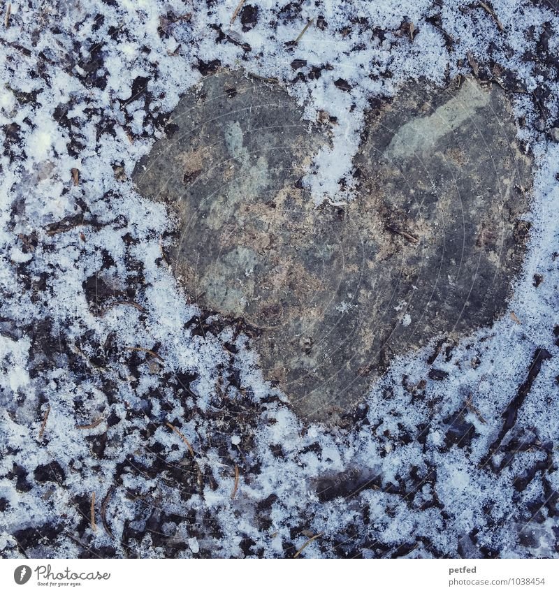 Heart of stone Nature Earth Winter Ice Frost Snow Stone Cold Wet Gray Black White Emotions Love Pain Damp Fantasy Structures and shapes Sign Colour photo