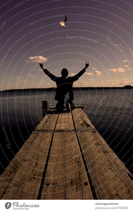 pray Prayer Lake Bird Footbridge Clouds Concentrate Power Force Nature Sky Earth