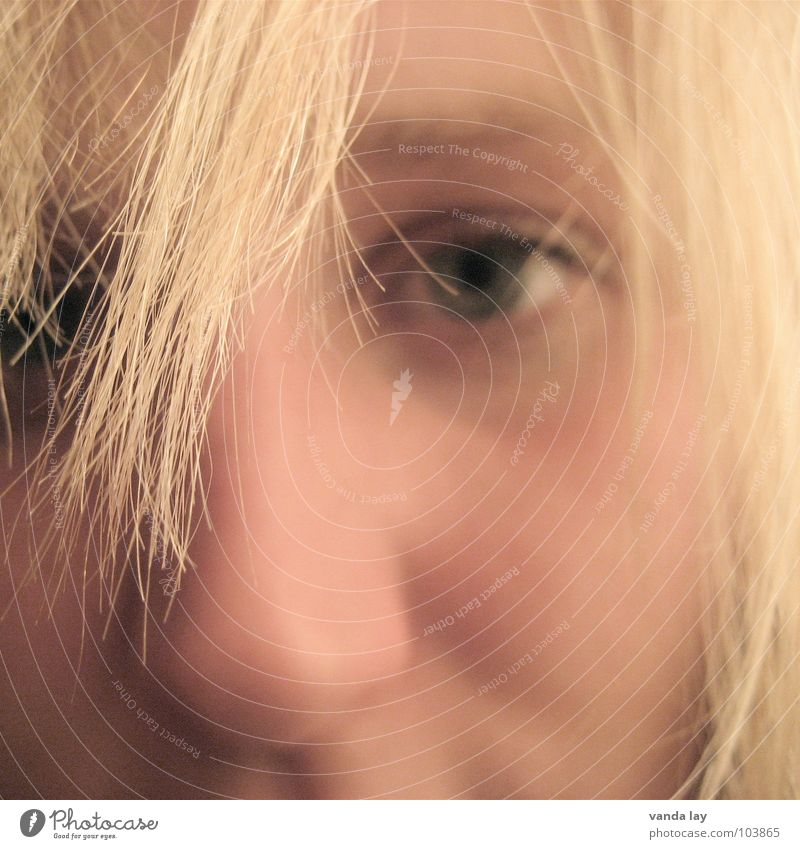 Hairdresser appointment urgently sought Woman Hair and hairstyles Portrait photograph Blonde Living room Boredom Face Eyes Nose Detail eye Bangs Human being