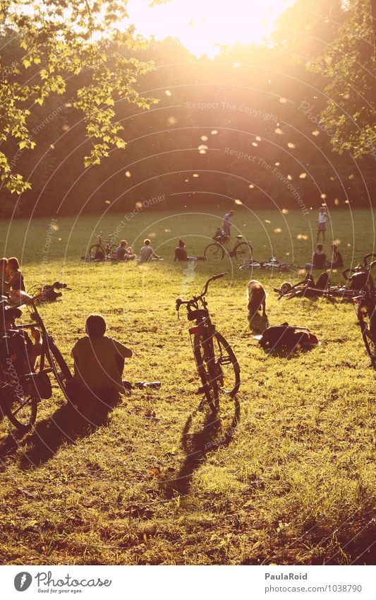 silence of sparks Harmonious Relaxation Calm Freedom Summer Sun Park Bicycle Human being Friendship Youth (Young adults) Adults Life Crowd of people Nature