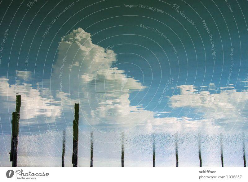 Cumulus Congestus aqueous Nature Water Sky Clouds Storm clouds Waves Lakeside Wet Blue Black White Joie de vivre (Vitality) Calm Climate Weather Surrealism Pole