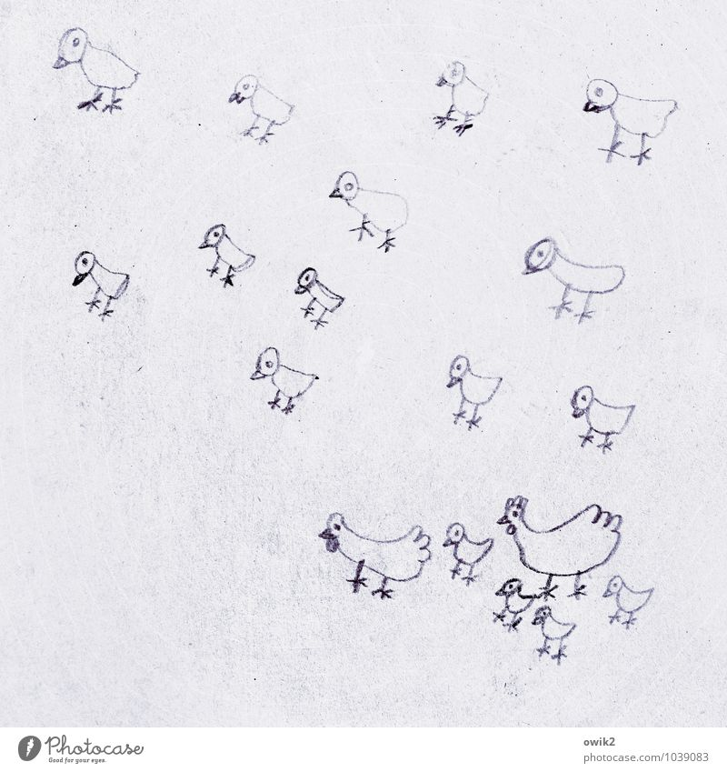 family happiness Art Work of art Drawing Children's drawing Barn fowl Chick Group of animals Simple Together Small Cute Many Attachment Poultry Poultry farm