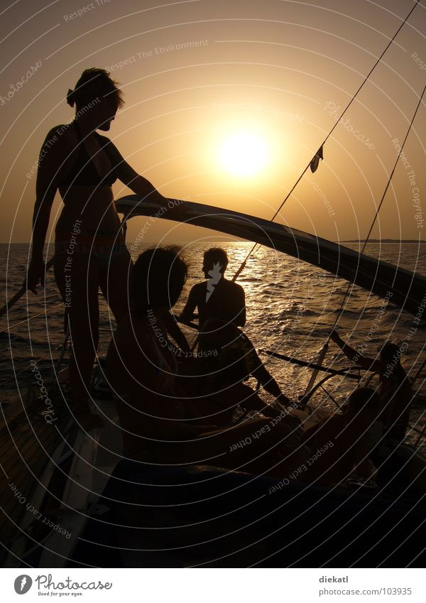 Sail away from the sunset Sailing Sunset Silhouette Ocean Watercraft Physics Croatia Summer Shadow Orange Human being chilly Warmth