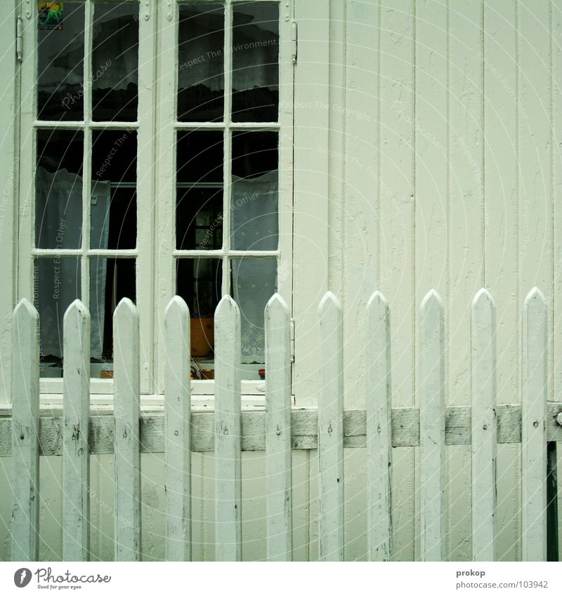 wren Fence House (Residential Structure) Detached house Wooden board Window Wooden house Stripe White Scandinavia Groomed Clean Tidy up Arrange Detail Beautiful