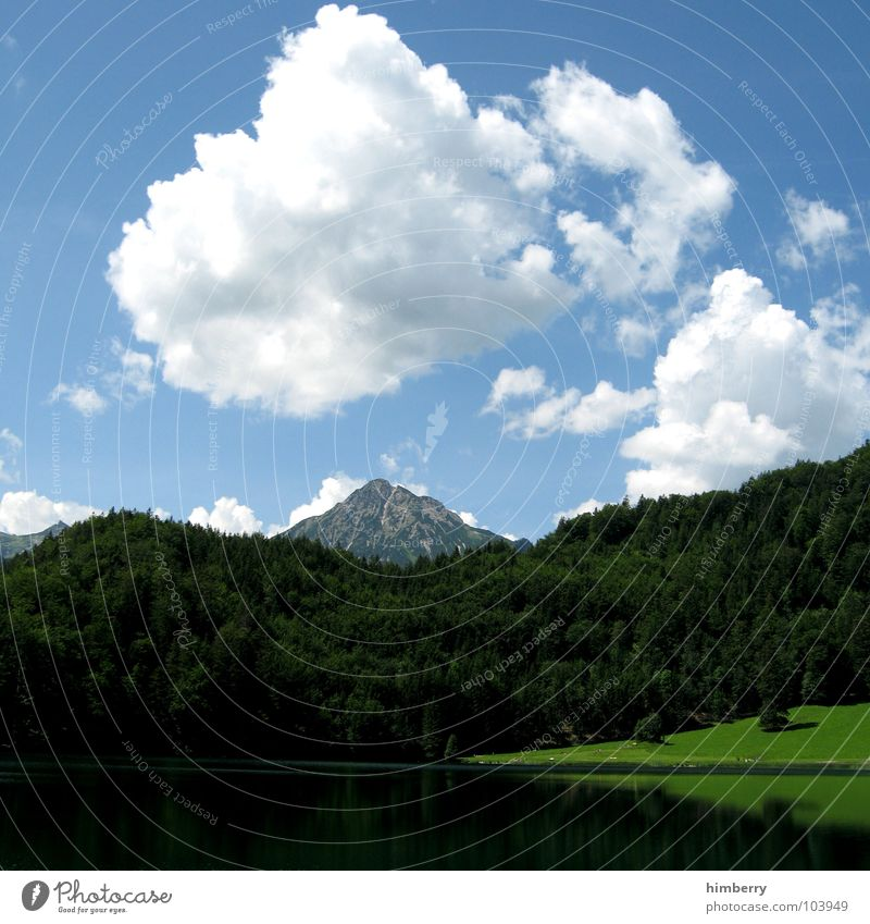 Nature Sky Green Plant Summer Clouds Forest Meadow Grass Mountain Landscape Environment Alps Hill Austria Wilderness