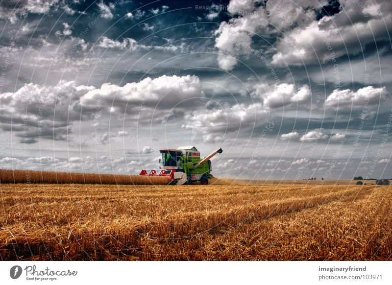 love the country Clouds Sky Countries Field Cornfield Summer Farmer Combine Americas Landscape wheat Harvest