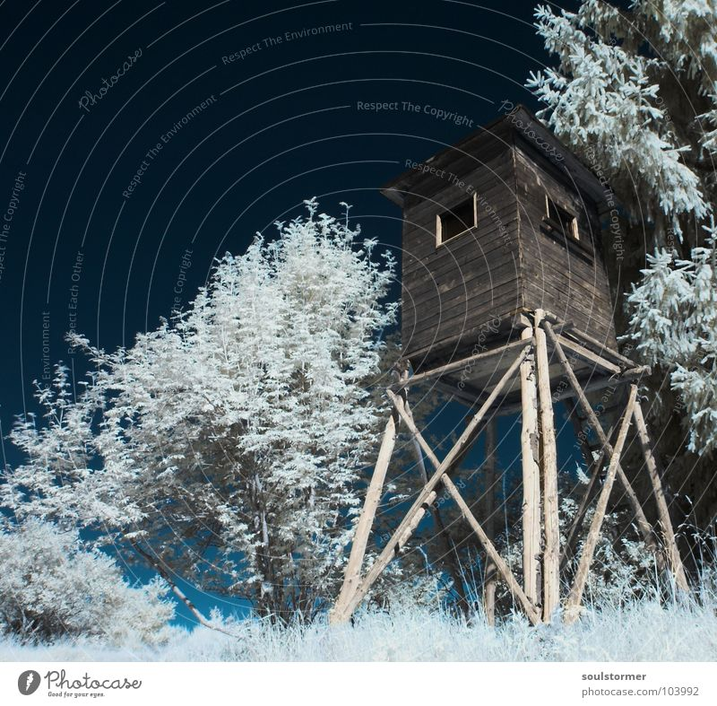 watchtower Infrared White Infrared color Passenger train Black Red Clouds Grass Wayside Meadow Wood flour Wood effect Gorgeous Exceptional Dream Fence Tree