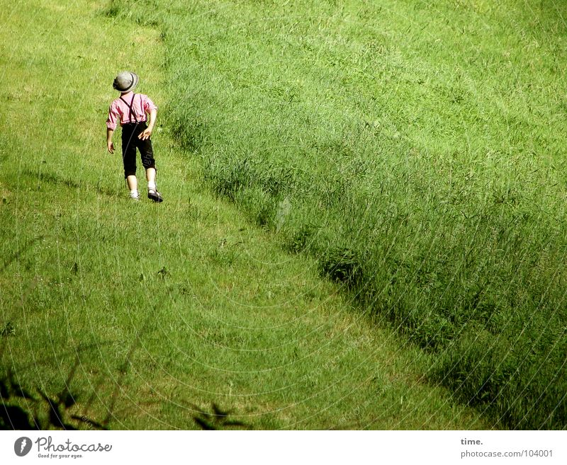 Child Green Meadow Playing Boy (child) Grass Happy Costume Dance Back Hiking Lawn Pasture Hat Diagonal Boredom