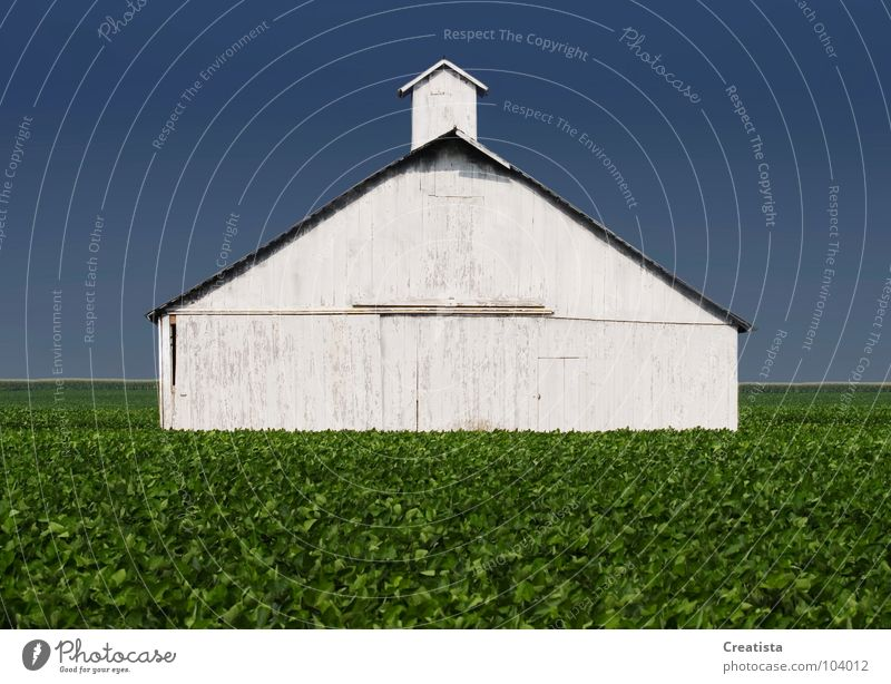 Rural Barn Wood flour Countries Sky Strong Nutrition Farm barn agriculture building crop leaf harvest horizon rural country grow distance whitewash exterior