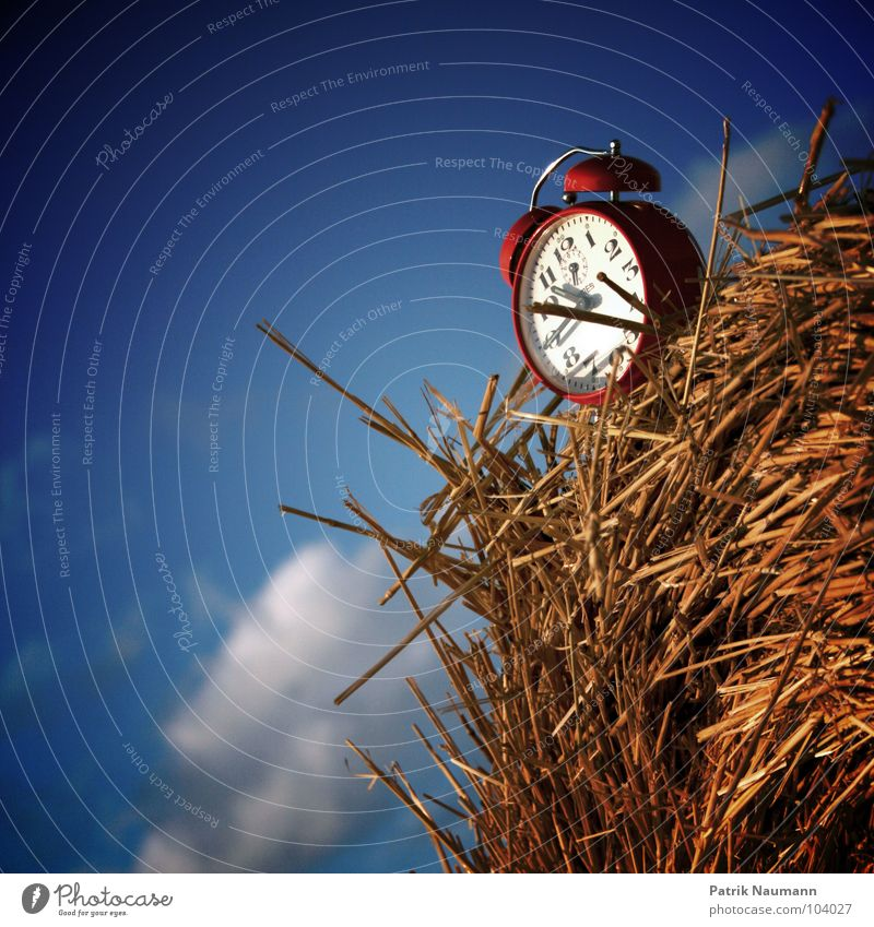 Harvest time IV Alarm clock Clock Tick tock Retro Time Red Straw Bale of straw Insubstantial Clouds Agriculture Rural Sky tick Clock hand temporal Blue Americas