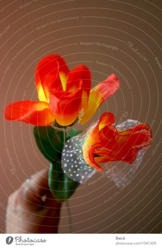 a floral greeting Hand Decoration Bouquet Kitsch Odds and ends Souvenir Plastic Artificial flowers funfair trophy 2 Donate Rose Flashy Colour photo