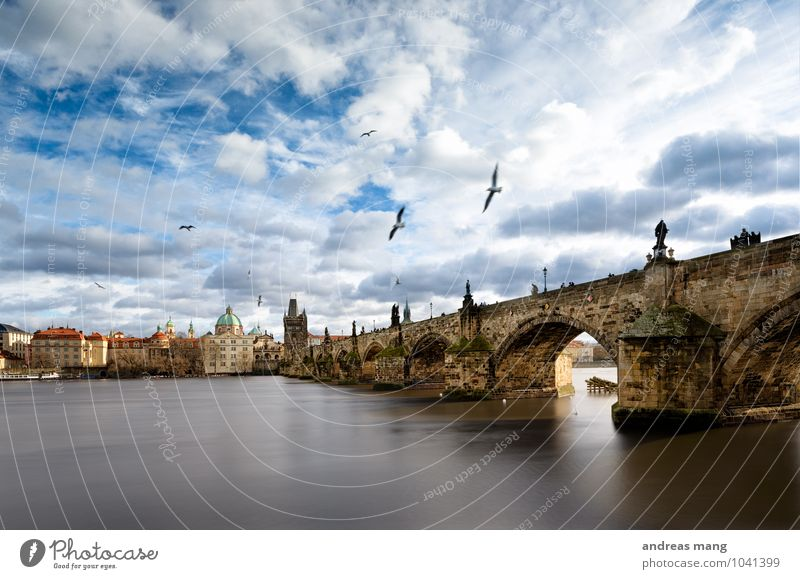 high achiever Sky Clouds Beautiful weather River Prague Town Church Bridge Tower Architecture Charles Bridge Bird Flock Flying Old Historic Unwavering Longing
