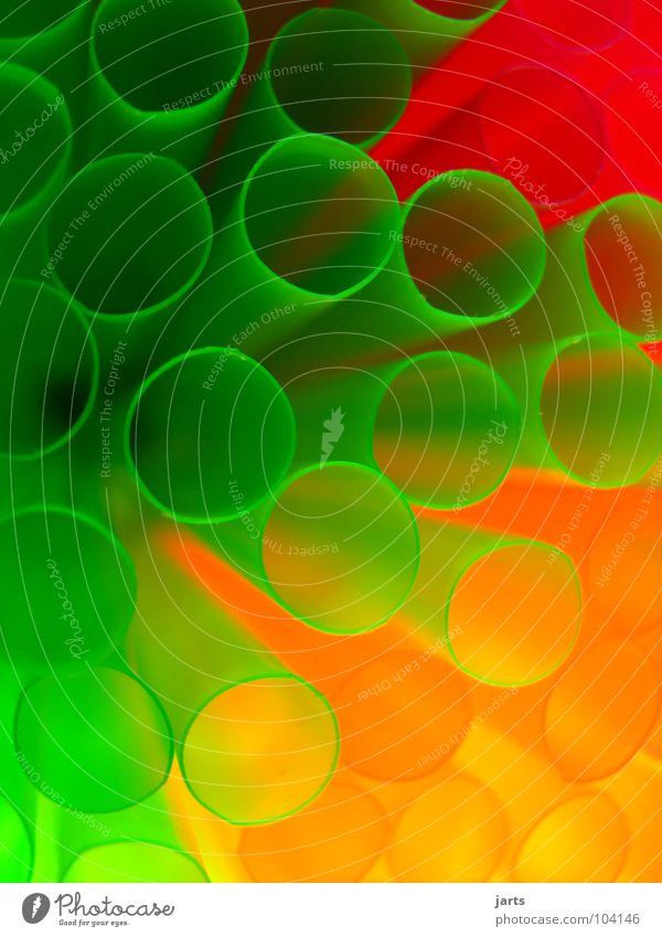 Colourful World II Multicoloured Light Green Red Macro (Extreme close-up) Close-up Birthday Decoration Blade of grass Orange jarts Feasts & Celebrations