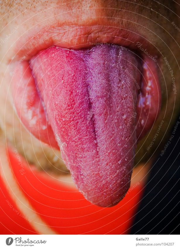 Joy Nutrition Funny Mouth Sweet Point Touch Anger Traffic infrastructure Tongue Indicate Vessel Absurdity Salty Organ Floor cloth