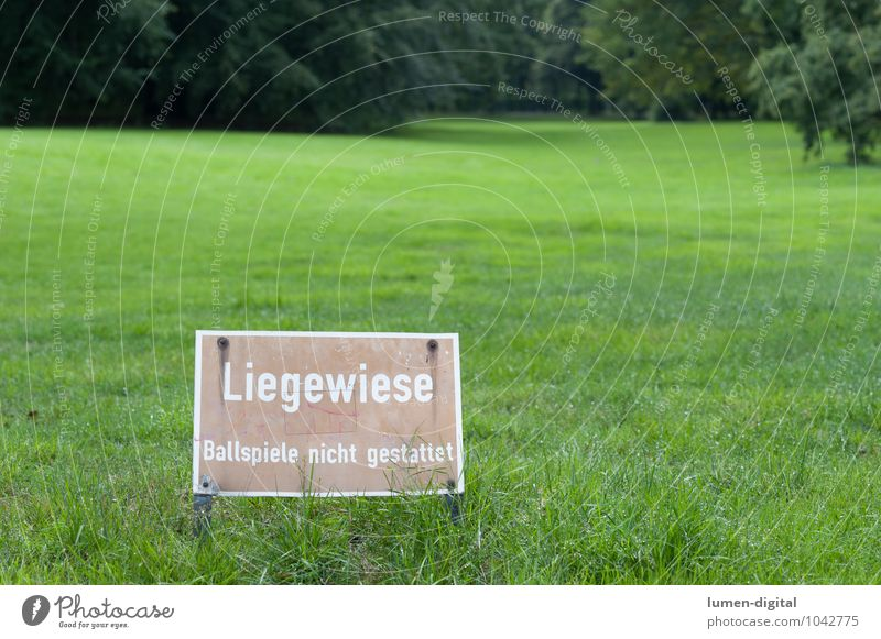sunbathing lawn Ball sports Tree Park Meadow Signs and labeling Wet Green Bans Berlin Damp Groomed background blur Lawn for sunbathing Landscape format sign