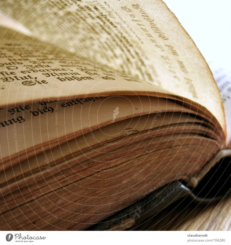 Old Book Paper Reading Characters Broken Decline Past Side Prayer Transparent Collection Tradition Fairy tale Pressure Sing