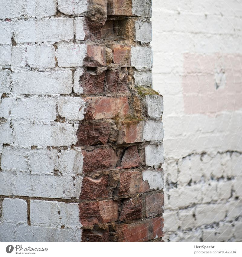 Old White Red House (Residential Structure) Wall (building) Building Wall (barrier) Pink Corner Broken Manmade structures Brick Ruin London Dismantling