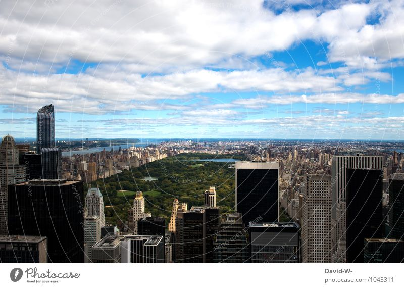 Central Park New York Luxury Tourism Living or residing Career Sky Clouds New York City Americas Manhattan Town Populated Overpopulated High-rise Architecture