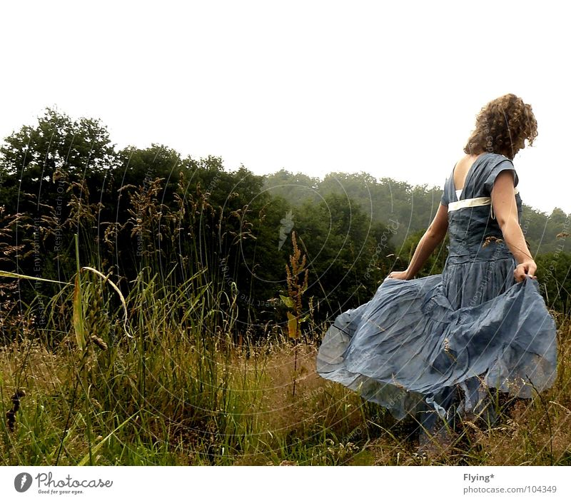 Woman Human being Beautiful Summer Forest Autumn Meadow Playing Grass Bright Contentment Dance Dress Fantastic Concert Curl