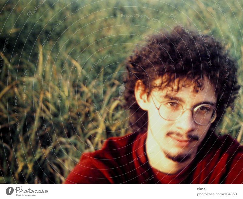 Man Eyes Meadow Adults Eyeglasses Ear Concentrate Direct Sweater Curl Former Denmark Moustache Goatee Evening sun