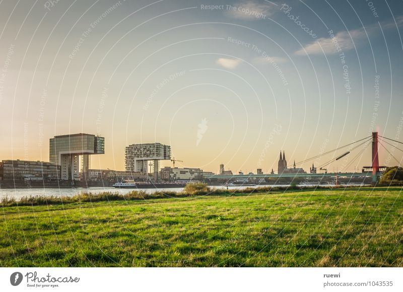 Hospitals, cathedral and Severinsbrücke bridge Vacation & Travel Tourism Trip Sightseeing City trip Summer Sky Beautiful weather Meadow River bank Town Downtown