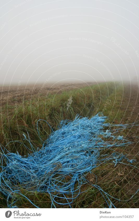 Blue Grass Sand Rain Field Fog Earth