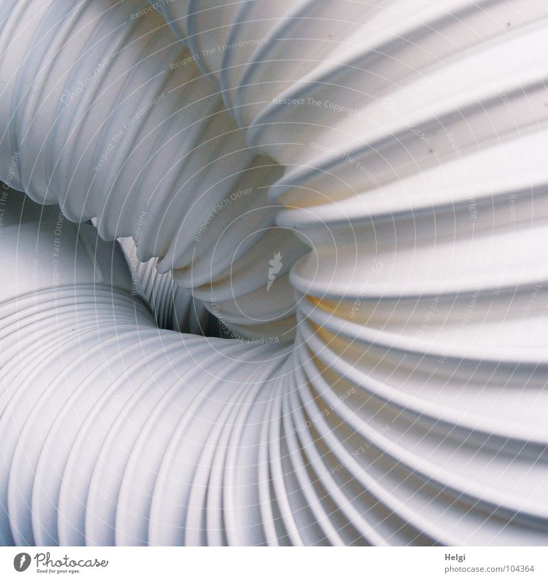 Detail of a concertina-like white exhaust hose Folded Wrinkles Muddled Hose Outlet air Hot Air Cooling Cold Wire Together Flat (apartment) Room Pleasant White