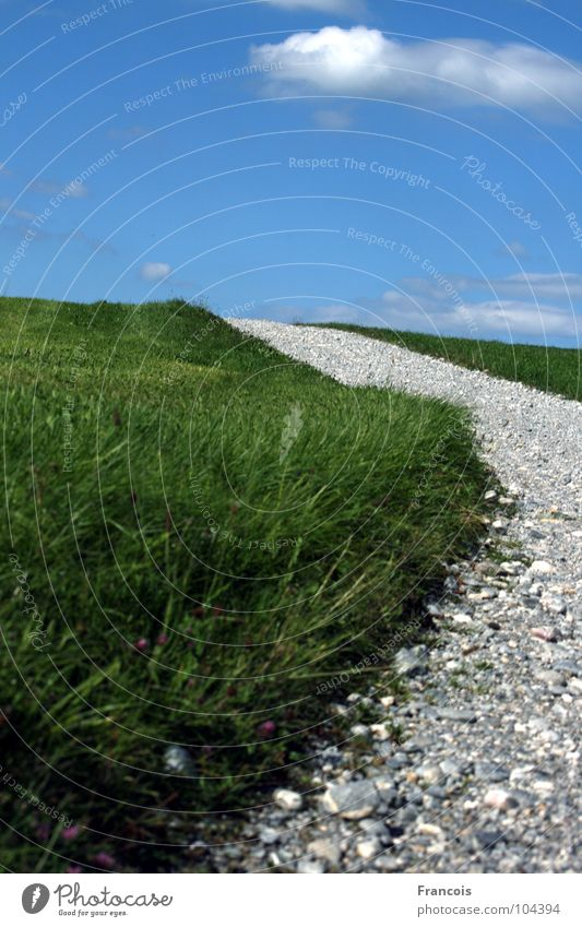Field path 1 Footpath Grass Stony Wayside Allgäu Summer Lanes & trails Sky Stone