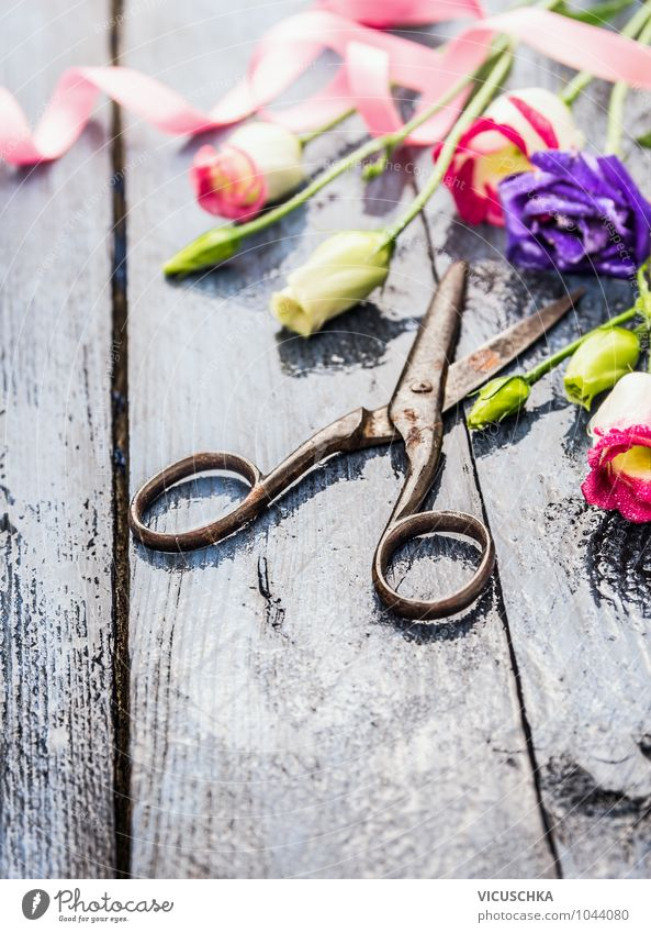 Flowers and old scissors on wet wooden table Lifestyle Style Design Leisure and hobbies Garden Decoration Plant Spring Summer Autumn Bouquet Bow Wood Water