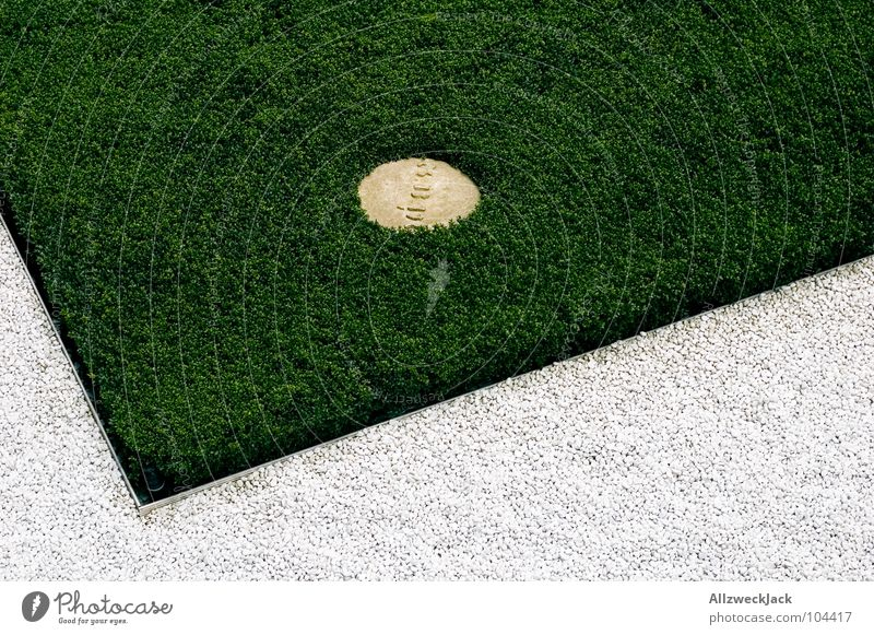 Beautiful White Green Summer Grass Garden Stone Lanes & trails Park Arrangement Corner Lawn Gravel Groomed Front garden