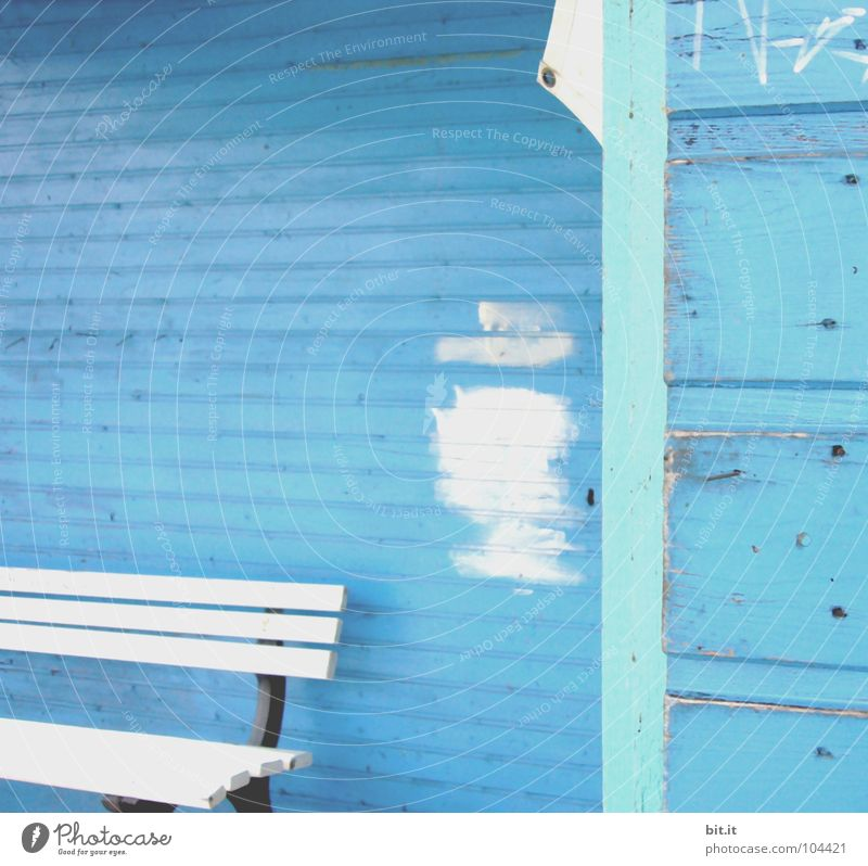 Mrs. Meier in peace Wooden wall Wooden house Wooden hut White Wooden bench Redevelop Redecorate Patch of colour Paintwork Blue aerosol aerosols Holiday at home
