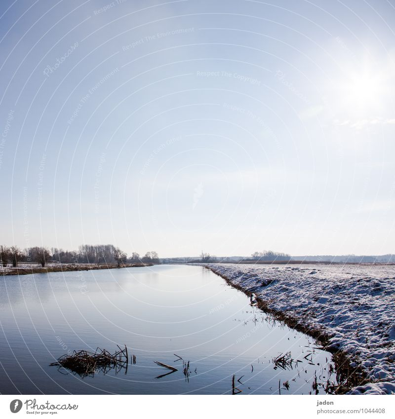 still water. Winter Snow Environment Nature Landscape Beautiful weather Grass Meadow Field River bank Cold Maritime Wet Loneliness Contentment Idyll Break Water