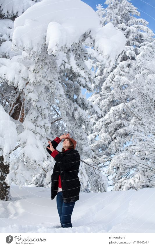 Gott bewahre! Human being Woman Nature Youth (Young adults) Blue White Tree Young woman Red 18 - 30 years Winter Black Cold Adults Snow Fear