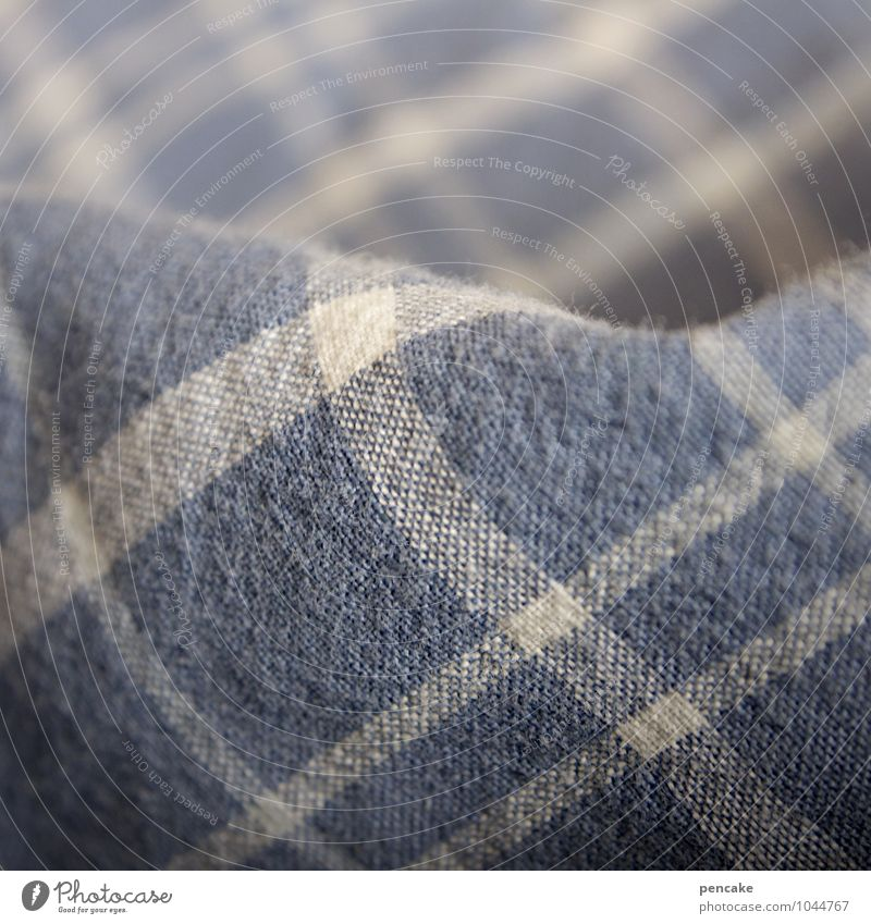 scrutiny Nature Good Natural Living or residing Bedclothes Duvet Checkered Blue-white Cozy Soft Relaxation Bedroom Sleep Cotton Cloth Slate blue Dove gray