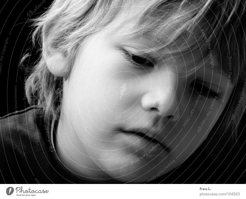 Gentle Child 7 Portrait photograph Blonde Concentrate Beautiful Soft Smart Earnest Dreamily Human being Boy (child) 7 years Hair and hairstyles Face kug Smooth