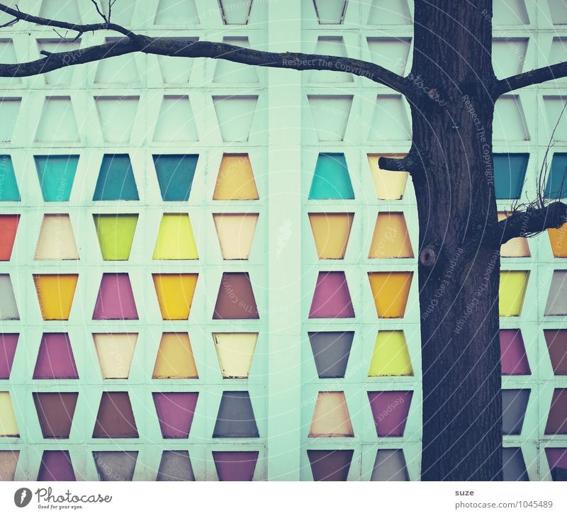 Leisure fun   4 wins Style Design Decoration Art Tree Building Architecture Wall (barrier) Wall (building) Facade Sign Old Sharp-edged Simple Retro Colour
