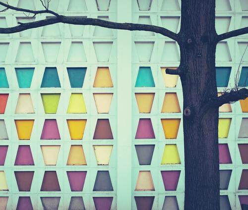 Leisure fun | 4 wins Style Design Decoration Art Tree Building Architecture Wall (barrier) Wall (building) Facade Sign Old Sharp-edged Simple Retro Colour