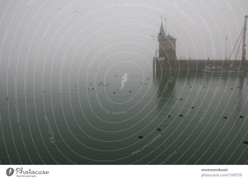 Autumn depression near Constance Ocean Fog Dark Grief Distress Fear Sadness