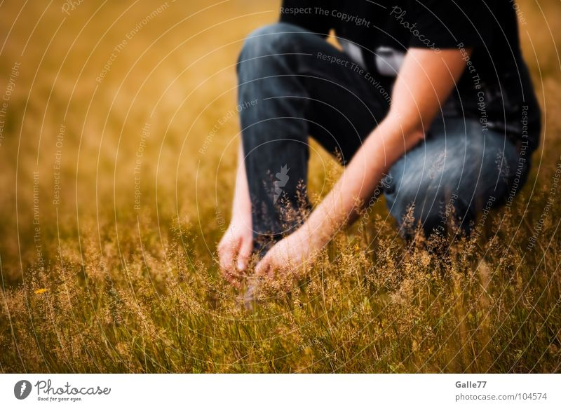 Summer Meadow Warmth Footwear Break Physics Breathe Crouch Pleasant Bond Summery